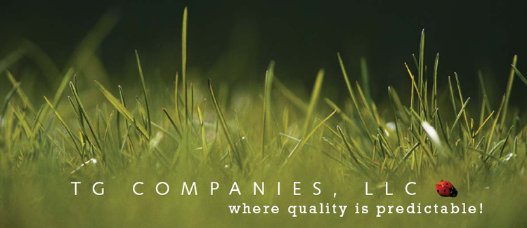 TG Companies, LLC where quality is predictable!